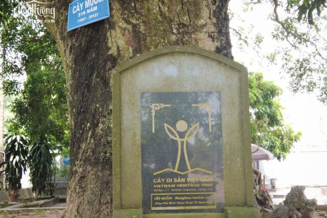 Chùa Phổ Minh